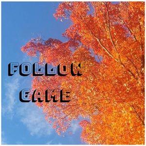 🎋Like & Follow